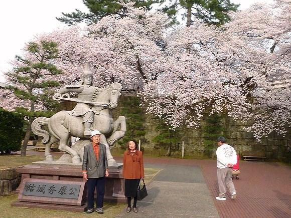 桜の木 開運表札 風水表札